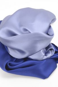 Etole bleue bicolore